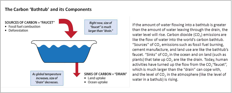 Illustration of a thick red arrow going into the bathtub and a thin red arrow exiting the tub. The sources of carbon, or the 'faucet' is shown by a thick red arrow that represents sources like fossil fuel combustion and deforestation. The 'drain' is shown by the smaller red arrow and represents sinks of carbon, like land and ocean uptake. Text boxes highlight that right now, the size of the faucet (or sources of carbon) is much larger than the drain (or sinks of carbon) and that as global termperature increases the size of the drain will decrease. Writing to the right of the image explains that: If the amount of water flowing into a bathtub is greater than the amount of water leaving through the drain, the water level will rise. Carbon dioxide emissions are like the flow of water into the world's carbon bathtub. 'Sources' of carbon dioxide emissions such as fossil fuel burning, cement manufacture, and land use are like the bathtub's faucet. 'Sinks' of carbon dioxide in the ocean and on land (such as plants) that take up carbon dioxide are like the drain. Today, human activities have turned up the flow from the carbon dioxide 'faucet', which is much larger than the 'drain' can cope with, and the level of carbon dioxide in the atmosphere (like the level of water in a bathub) is rising.