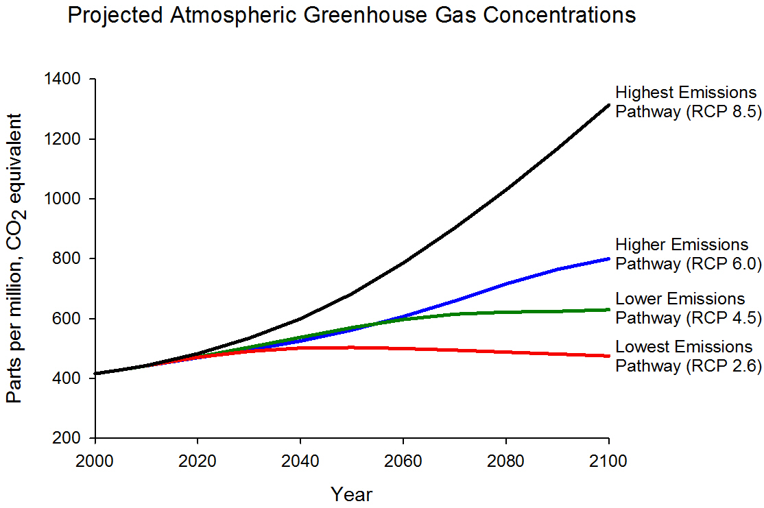 Line graph that shows projected atmospheric Carbon Dioxide concentrations under four different climate scenarios for the years 2000 through 2100. The observed concentrations for 2000 through approximately 2008 are also shown in the graph to be about 380 parts per million. The lowest line shows the projection for stabilization at 450 parts per million. Under the 'lower emissions scenario (B1),' Carbon Dioxide concentrations would increase to approximately 550 parts per million by 2100. Under the 'higher emissions scenario (A2),' Carbon Dioxide concentrations would reach approximately 850 parts per million by 2100. Under the 'even higher emissions scenario (A1F1),' concentrations would exceed 950 parts per million by the end of the century.