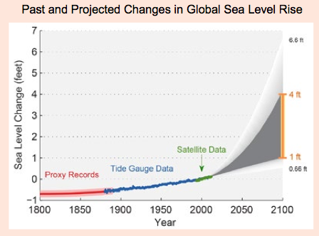 Line graph that shows sea level change from 1950 to 2100. Data from 1950 to 2000 shows moderate sea level rise from approximately negative four inches to approximately two inches. For the 21st century, sea level change is projected by four scenarios: AR4, B1, A2, and A1F1. Under the AR4 scenario, sea level change would increase by approximately sixteen inches by the end of the century. Under the B1 scenario the projected rise is approximately 40 inches; under the A2 scenario, approximately 48 inches; and under A1F1, approximately 56 inches by 2100. Sea level change is projected to increase under all the scenarios.