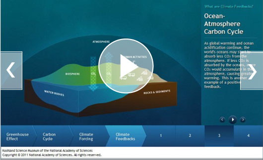 Ocean-Atmosphere Carbon Cycle: As global warming and ocean acidification continue, the world's oceans may start to absorb less CO<sub>2</sub> from the atmosphere. If less CO<sub>2</sub> is absorbed by the oceans, more CO<sub>2</sub> would accumulate in the atmosphere, causing greater warming. This is another example of a positive feedback.